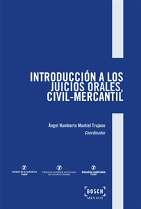 Imagen de Introducción a los juicios orales, civil-mercantil
