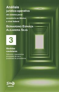 Imagen de Análisis jurídico-operativo del sistema penal acusatorio en México a nivel federal.  Tomo III